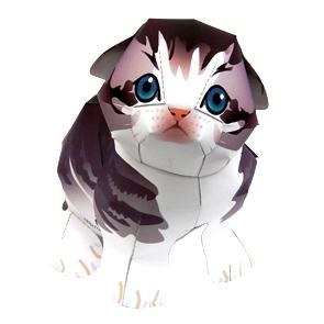 スコ猫 イラスト 20120522